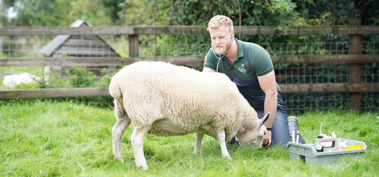 Modern veterinary facilities to support your farming needs